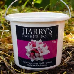 Harry's Daphne Food