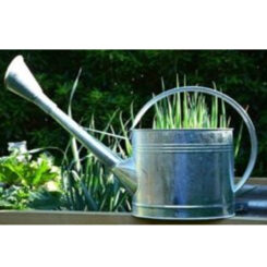 Cast Iron Novelty Watering Can Thermometer