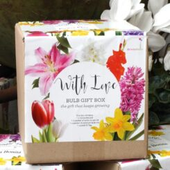 bulb gift box mothers day