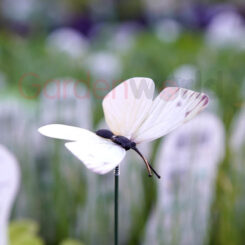 white butterfly on a stick