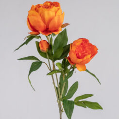 rtc-3946or-peony-spray-orange