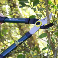 Handy Bypass Pruner